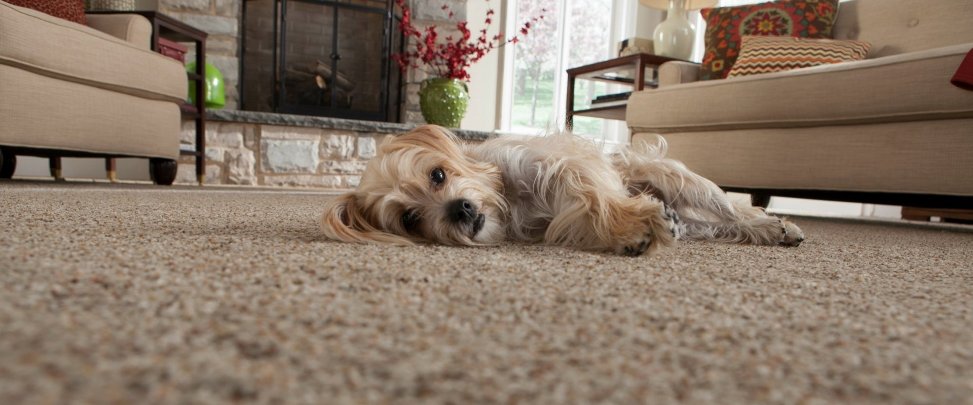 Living Room Carpeting